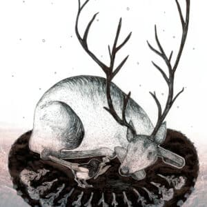Yule Midwinter Illustration Solawende Reindeer 2017